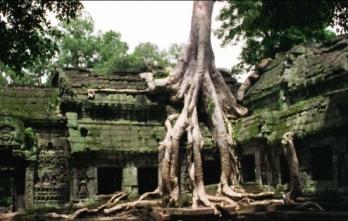 Tour du lịch campuchia siem reap - phnom penh - 4 ngày 3 đêm