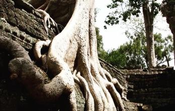 Tour Siem Reap - Phnom Penh 4N3Đ